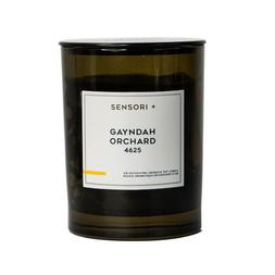Detoxifying Soy Candle - Gayndah Orchard