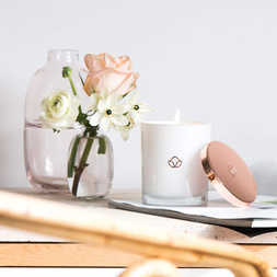 Amber Fig Soy Candle