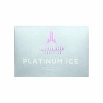 Platinum Ice Pro Palette