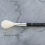 xoBeauty Sheer Powder Brush